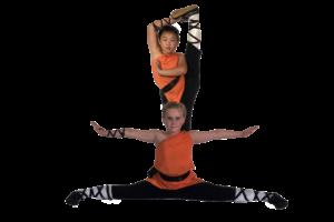 Danla Shaolin Gongfu